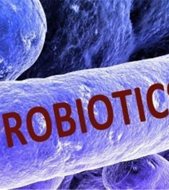 پروبیوتیک ها