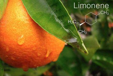 لیمونن